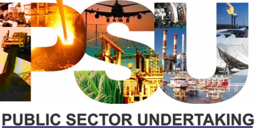 Public Sector Undertaking